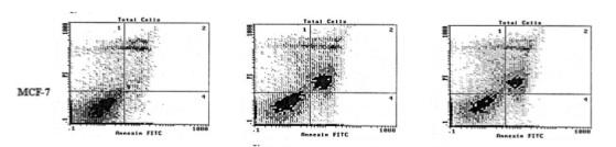 Figure 5, excerpt from et al.,